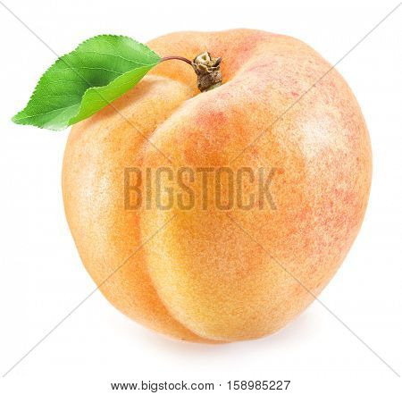 Ripe apricot fruit. Clipping paths.