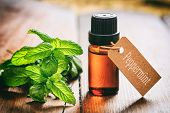 Fresh Peppermint And Oil On Wooden Background poster
