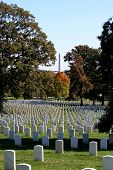 foto of arlington cemetery  - Gravestones at Arlington National Cemetery with the Washington Monument in view - JPG