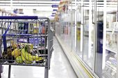 image of grocery store  - partial view from behind of a grocery shopping cart partially filled with food with a shallow depth of field isolating the cart - JPG