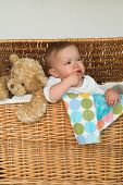 image of fussy  - Image of a cute fussy baby and a teddy bear peeking out of a wicker trunk - JPG