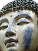 stock photo of siddhartha  - Stone Buddha Statue Face  - JPG