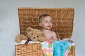 picture of fussy  - Image of a cute fussy baby and a teddy bear peeking out of a wicker trunk - JPG