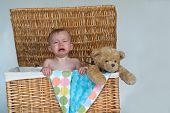 stock photo of fussy  - Image of a cute fussy baby and a teddy bear peeking out of a wicker trunk - JPG
