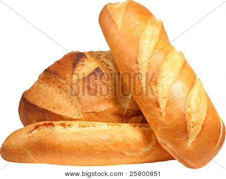 Fresh bread. Vector illustration.