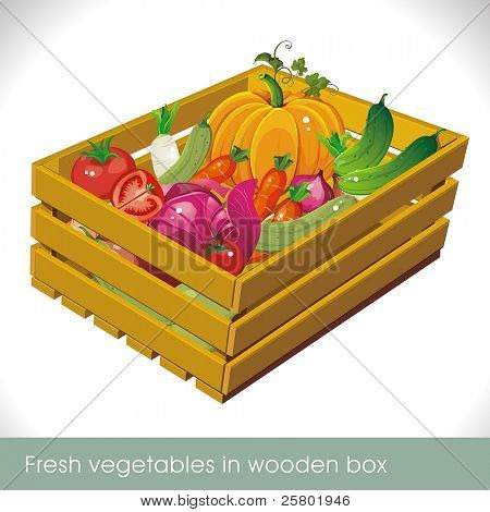 Fresh vegetables in wooden box isolated on white. Vector illustration.