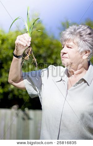 Grandmother In Her Garden