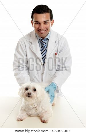 Confident Vet With Pet Dog