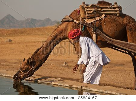 Water For Camels