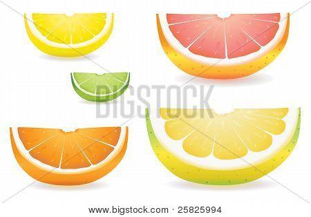 Citrus Slice Variety