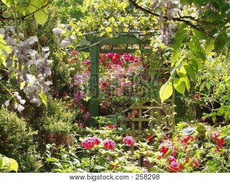 Verträumter Garten