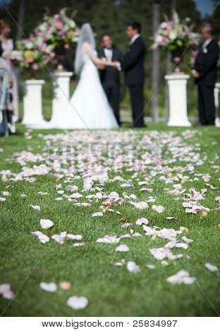 Bride and groom getting married focus on rose petals