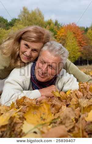 Aged Couple On Leaves