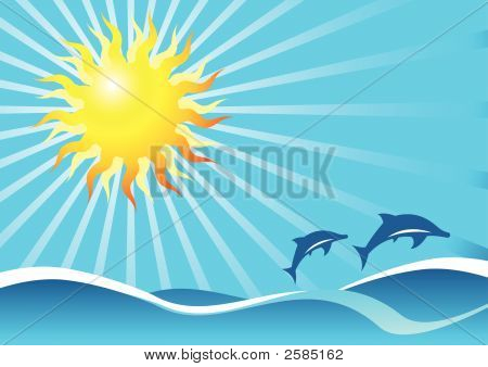 Sun Sea And Dolphins