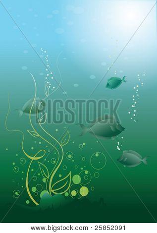 Vector Aquarium with fish