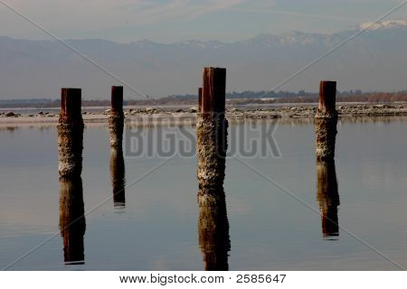 Posts Of The Salton Sea
