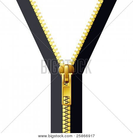 vector illustration of zipper
