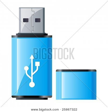 Ilustración de vector de USB Flash Drive