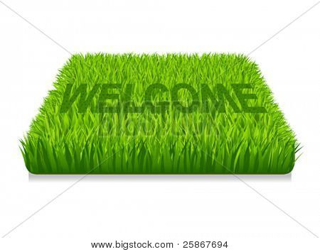 Welcome. Doormat of the green grass