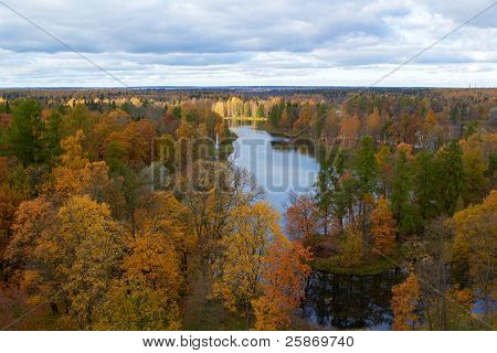 trees and lake. Gatchina park. St. Petersburg