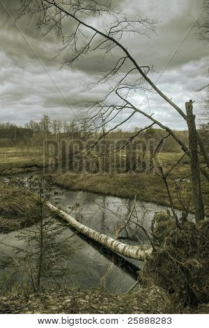 Fallen Tree against curvy river in dark cloudy weather