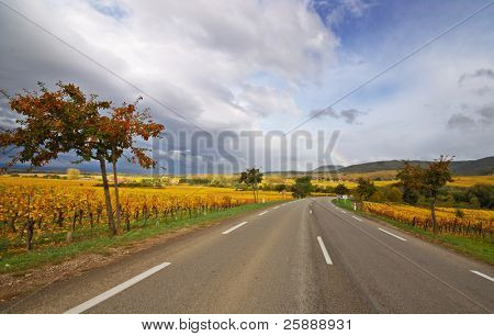 Scenic Vine Route Motorway in France