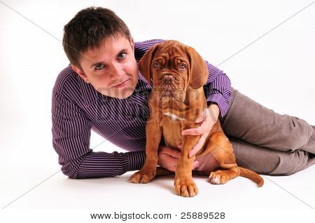 Puppy of Dogue de Bordeaux with Man