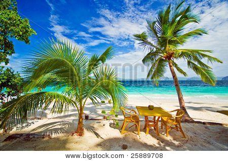 Dining in Paradise Beach Settings