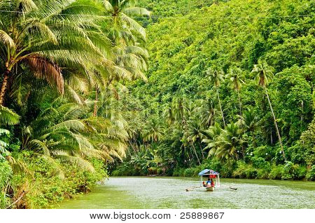 Cruising boat on Rainforest River