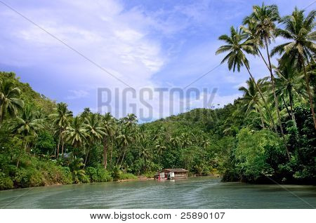 Tropical jungle river between palm trees on an exotic canyon slope with a floating house
