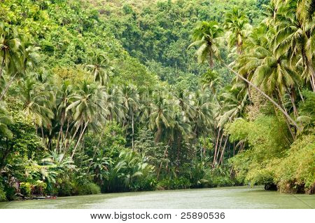 Tropical river, jungle on both shores