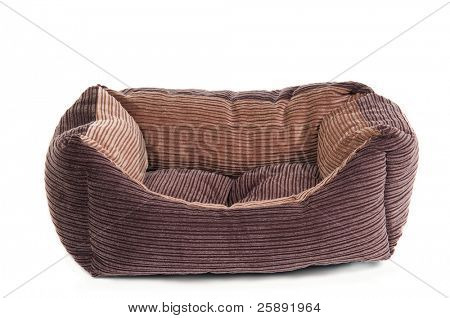 Comfortable cot for pets (cats and dogs) isolated