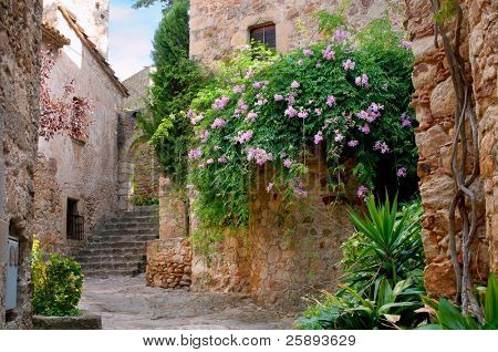 Summer garden in the medieval town of Peratallada, Spain