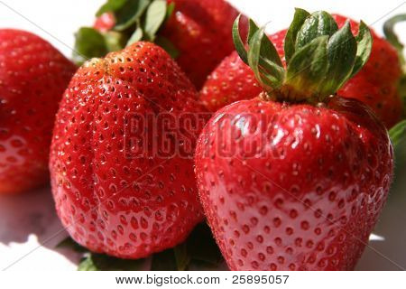 fresh ripe strawberries on a white background with nice shadows
