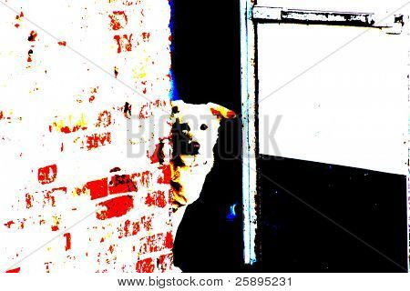 Pop Art of a dog in a doorway
