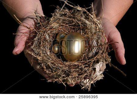 nest egg isolated on black background