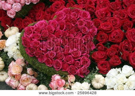 red roses in the shape of a valentine heart