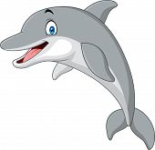Vector Illustration Of Cartoon Funny Dolphin On White Background poster