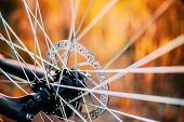 Close Up Bicycle Wheel. Spokes Details. Close Up poster