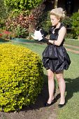 image of nutter  - Strange Rich Woman Watering Her Garden Hedge With A Teapot - JPG