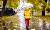 Little Child Walking In The City Park At Rainy Autumn Day. Toddler Boy With Umbrella For Fall Weathe poster