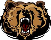 stock photo of growl  - Growling Bear Head Mascot Graphic Vector Image - JPG