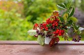 Bouquet Of Autumn Berries And Leaves In A Pumpkin Vase.rowan Berries, Black Chokeberry Berries, Vibu poster