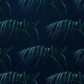 Palm Leaves Background. Vector Botany Illustration. Summer Floral Pattern. Jungle Or Rainforest Cove poster