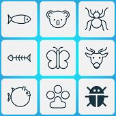 Zoology Icons Set With Globefish, Paw, Butterfly And Other Claw Print Elements. Isolated Vector Illu poster