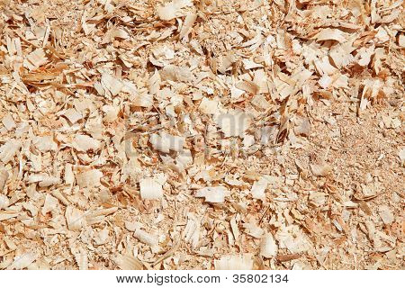 Sawdust on the lumber yard