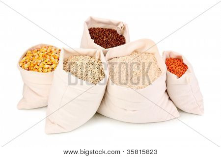 Cloth bags with grain isolated on white
