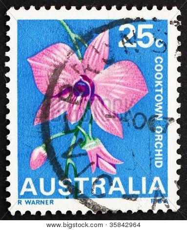 Estado de orquídea de Cooktown, Queensland, Australia 1968 estampilla