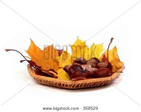Herbst Korb