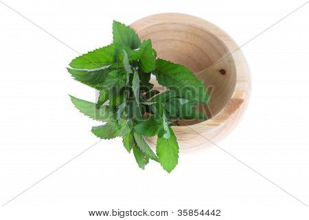 Mint In A Wooden Pounder